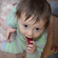 eating radishes